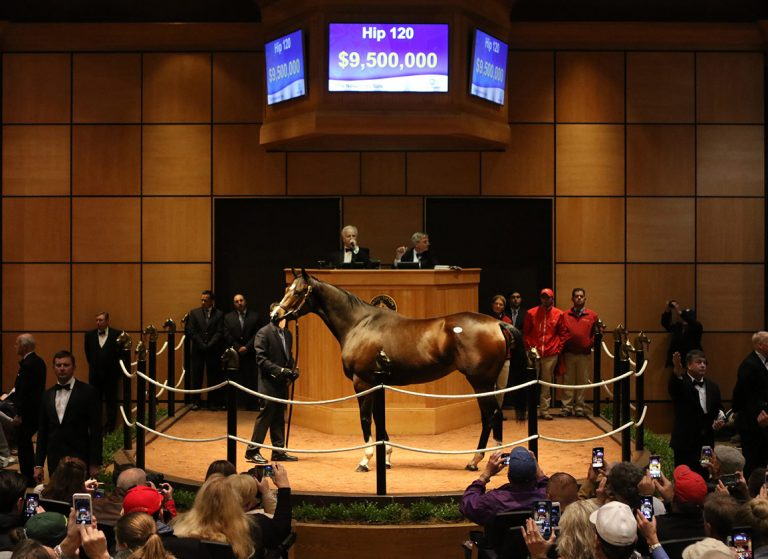 Hip_120_Songbird_ring_b_FTKNOV17_PRINT_photo_Fasig-Tipton-768x559